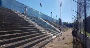estadio sacando yuyos