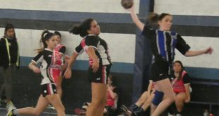 Jornada del Handball